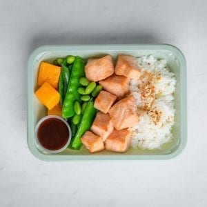 salmon rice square